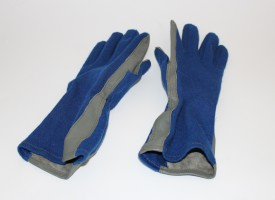 Piers Sellers' NASA T-38 Flight Gloves