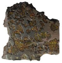 Imilac Meteorite BM1906,52