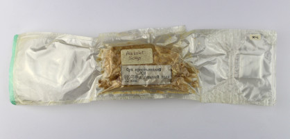Russian Space Food – Peasant Soup