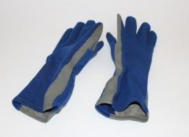 Piers Sellers' NASA T-38 Flight Gloves